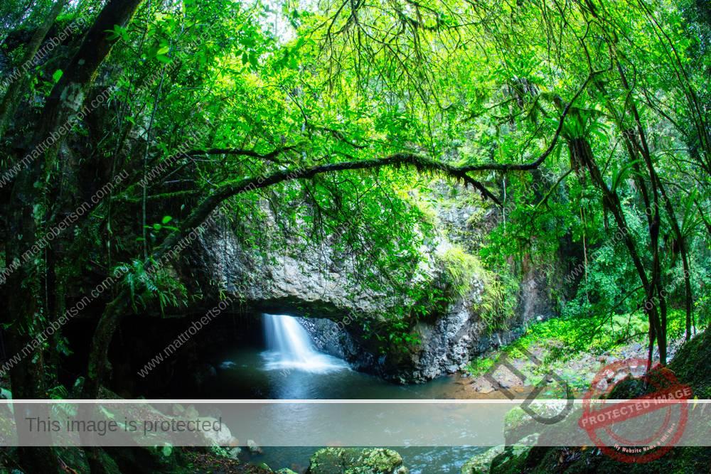 natural_bridge005pa